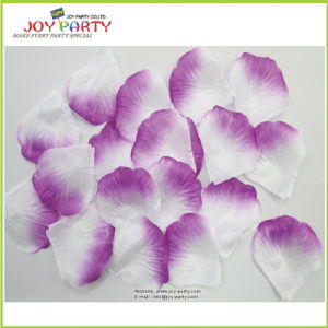 Light Purple and White Rose Petals