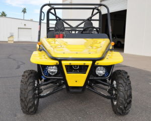 1100CC 4X4 Buggy off Road Go Kart pictures & photos