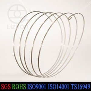 High Quality Stainless Steel Bellow Spring with Secondary