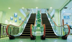 Luxury Indoor Types Escalator for Residential pictures & photos