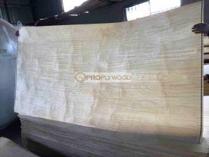 Nature US White Birch Veneer Rotary Cut C/Cu/C+ Grade For Furniture Or