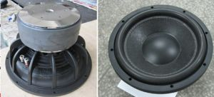 "12"" 1000 Watts Car Subwoofer Speaker (HSW-1223) pictures & photos"