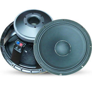 PA Woofer Speaker (TBX-12PS100) pictures & photos