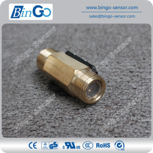 Hot Sale Water Flow Switch Fs-M-Psb02-Gd-FM pictures & photos