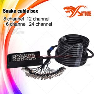 Custom 24 Channel Snake Box with 24 XLR pictures & photos