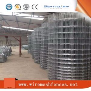 Hot Sale Galvanized Cattle Farm Field Fence pictures & photos