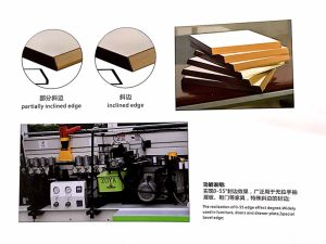 ZY. 230CX-Beveling Automatic Edge Banding Machine pictures & photos