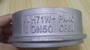 H71 Wafer Type Single Plate Lift Check Valve pictures & photos