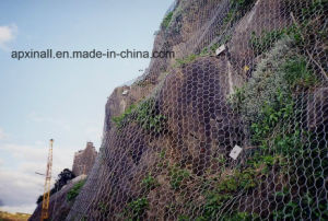 Rockfall Netting /Hexagonal Wire Netting pictures & photos