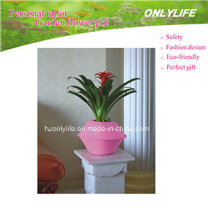 Fashion Design Colourful Flower Pot