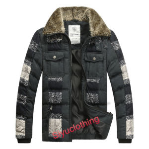Mens Lapel Dark Color Fashion Popular Down Padding Classical Jacket (F-1631) pictures & photos