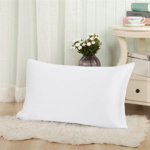 Taihu Snow Silk 19m/M Pure Color 100% Mulberry Silk Pillowcase pictures & photos