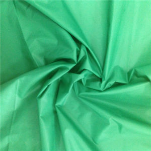 400t Semi Dull Nylon Taffeta for Down Jacket (XSN-001) pictures & photos