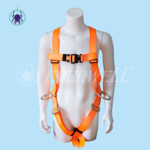 Full Body Harness, Safety Harness, Seat Belt, Safety Belt, Webbing with Three-Point Fixed Mode (EW 0100BH)
