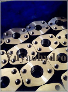 SAE Forged Socket Weld Flanges pictures & photos