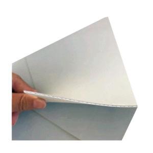 Sika Pre-Applied Tpo Roof Waterproof Membrane