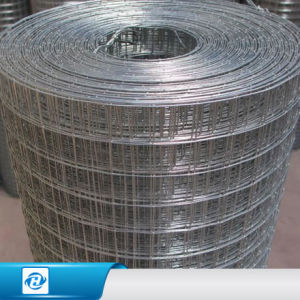China Galvanized Square Mesh Wire Netting Electro Galvanized Welded ...