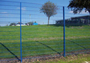 Galvanized or PVC Coated Double Wire Fence