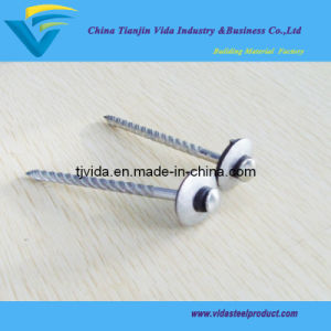 Excellent Quality of Galvanized Spiral Nails with Rubber Wahser