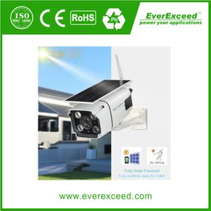 Wholesale Security Product