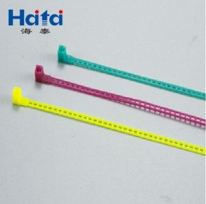 Hole Cable Ties pictures & photos