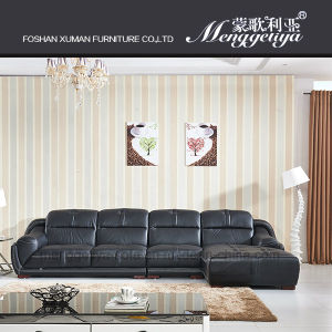 Top Grain Leather Classic Sofa (815#)