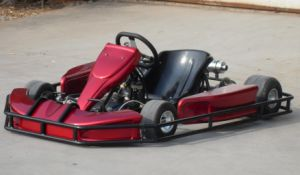 8HP 110cc Racing Go Kart for Sale pictures & photos