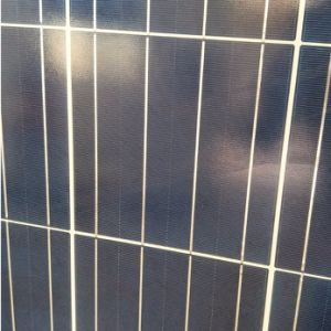 Hot Sale Poly 150W Solar Panel for Middle East pictures & photos