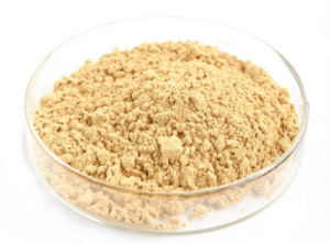 Best Chinese Ginseng Extract Powder on Hot Sale