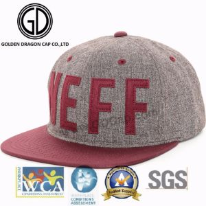 2017 OEM Fashion Baseball Canvas Cotton Snapback Cap with Embroidery and Applique pictures & photos