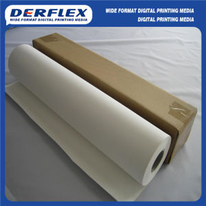 Premium Polyester Canvas 600d for Solvent Ink Print pictures & photos