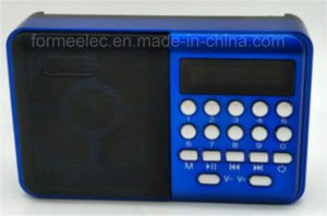 Portable FM Radio Multimedia USB Card Radio pictures & photos