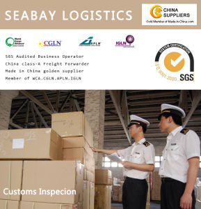 China Freight Forwarder Customs Broker pictures & photos