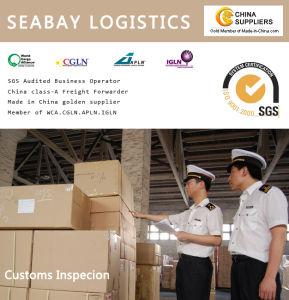 China Freight Forwarder Customs Broker - China Forwarder