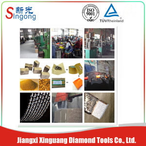Hot Sales Diamond Segments China Manufacturer pictures & photos