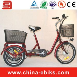 2014 Hot Sale Three Wheels Electric Bike (JSE501)