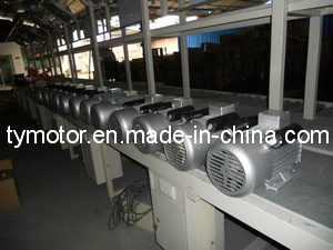 YC Induction Motor