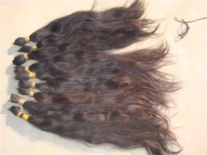 Brazilian Natural Hair Extension Human Hair Bulk