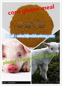 High Quality Feed Additive Corn Gluten Meal for Animal Feed