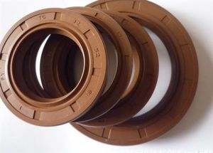 Delicate OEM/NBR/FKM/Vmq/PTFE/Silicone Rubber Oil Seal pictures & photos