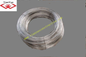 Electro Galvanized Iron Wire (TYA-5) pictures & photos