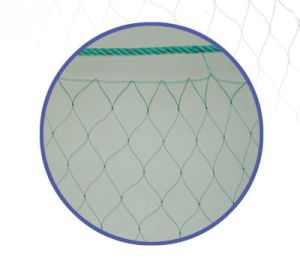 Wholesale Net
