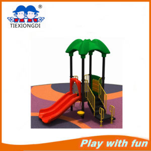 Ce Certificated Backyard Playground Equipment pictures & photos