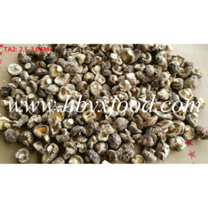 2.5-3cm Fresh Dried Tea Flower Shiitake Mushroom pictures & photos