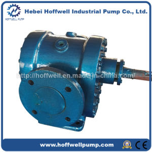 YCB-G heating gear oil pump pictures & photos
