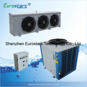 Air Cooled Condenser Unit for Cold Room pictures & photos