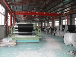 Conveyor Running Machine Belt, Motorized Treadmill Belt,Belt Conveyor, Conveyor system,PVC Belt,Timing Belt,Auto Parts,Machine,Machinery,Rubber Conveyor Belt pictures & photos