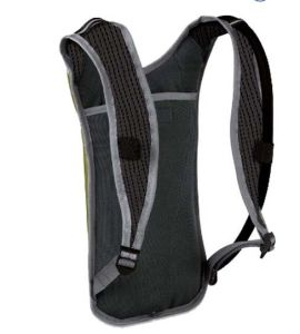 Hiking Hydration Pack, Promotional Bag Camelback Sh-16041812 pictures & photos