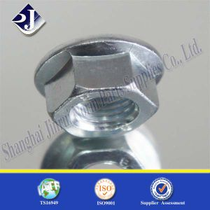 Hex Flange Nut for Automobile SGS pictures & photos