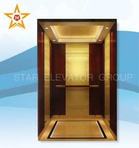 Commercial Lift with Golden Etching Stainless Steel Xr-P53